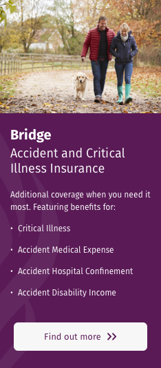 Accident and Critical Illness Insurance